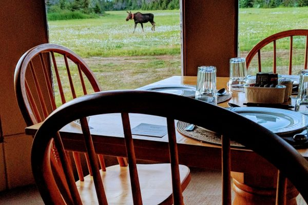 Moose Restaurant