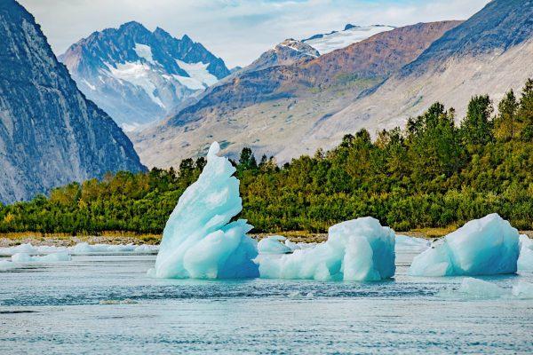 glacier bay10
