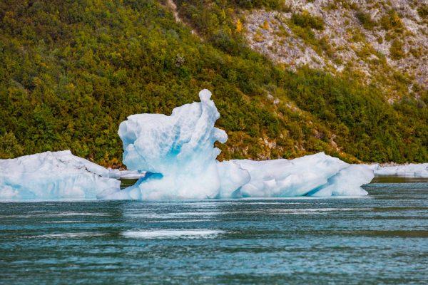 glacier bay17